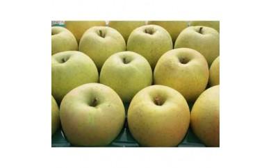 <ふじ発祥の地>藤崎町産りんご 家庭用王林約10kg【1031231】