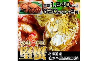 B53 北海道産 毛ガニ 最高級規格 『堅蟹』 かたがに 合計1240g以上 (620g以上×2尾)