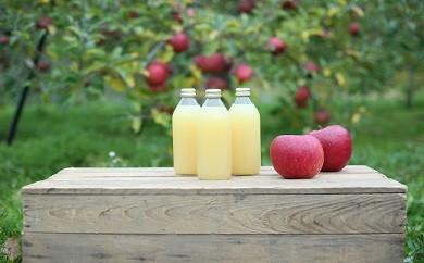 B0216 北上産 りんご 果汁100% ストレート ジュース(8本)