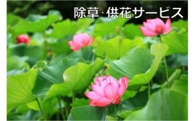ご先祖見守りサービス:除草・供花サービス
