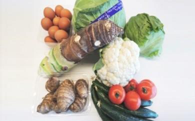 [№5535-0036]季節の野菜詰合せ