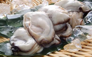 [№5709-0123]広島産 冷凍かき(窒素凍結)食べ比べセット