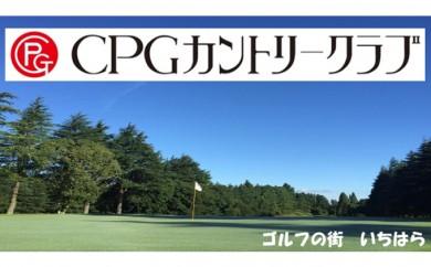 [№5689-0298]セルフプレーご招待券【平日のみ、1名様】を1枚