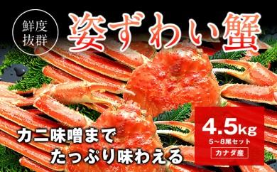 D062 姿ずわい蟹 ボイル済み 約4.5kg