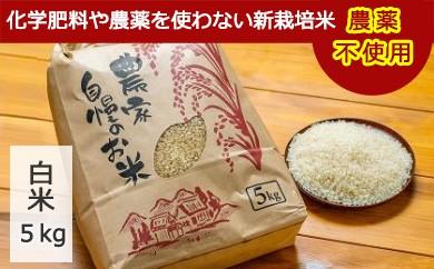 C0017 希少な無農薬新栽培米 5kg