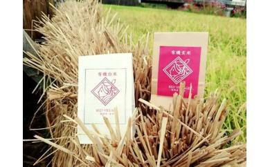 【平成29年産米】地域おこし協力隊プロデュース!!有機JAS認定赤村産(夢つくし)白米と玄米セット