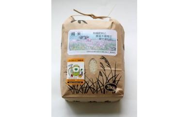 【受付期間外】F002 有機肥料と農薬不使用で育てた帆足さん家のヒノヒカリ(3kg)【10000pt】