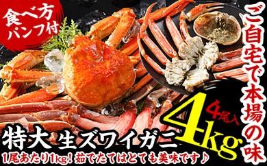 CB-01025 生ズワイガニ姿4尾(計4kg)[419431]