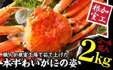 CD-01002 本ズワイガニ2~4尾(計2kg)セット[381965]