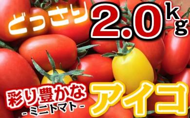 35-03彩り豊かなミニトマト「アイコ」2kg