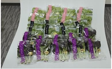 名張シティファーム水耕野菜特別セット