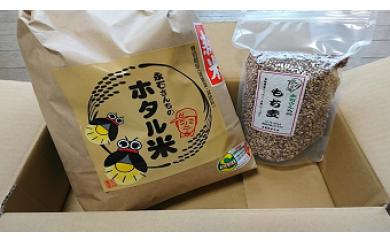 z-15 減農薬 永石さんちのホタル米ともち麦セット
