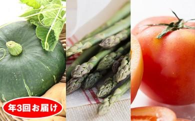 [№5724-0182]旬の野菜 年3回お届け(アスパラガス・高糖度トマト・カボチャなど)