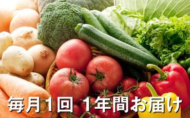 [№5672-0158]「おおばん市場」旬の野菜詰合せ 毎月1回 1年間お届け 頒布会
