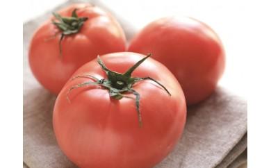 K057★受付終了★【限定】ミネラル豊かな「オホーツク塩トマト」
