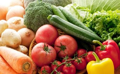 [№5672-0156]「おおばん市場」旬の野菜詰合せ