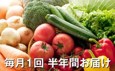 [№5672-0157]「おおばん市場」旬の野菜詰合せ 毎月1回半年間お届け 頒布会