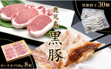 B2-0806/鹿児島産黒豚ロースカツ(100g×8枚)&黒豚餃子セット
