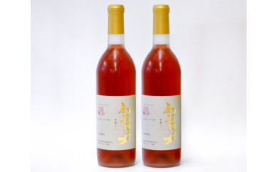 No.124 千歳ワイナリーワインセットB / ハスカップワイン 甘口 フルーツワイン 北海道 人気