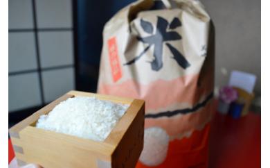 AQ13:鮎原米 10kg×2袋