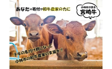 29-1073 【和牛農家支援プログラム】子牛の命名権!