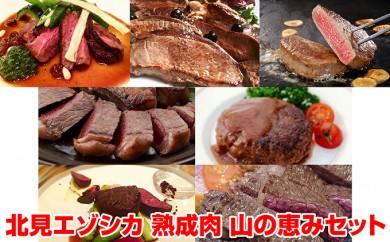 [№5742-0423]北見エゾシカ 熟成肉 山の恵み セット