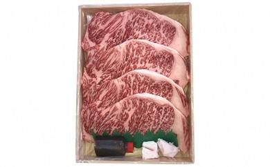 [№5751-0147]兵庫県産 黒毛和牛 サーロインステーキ 5枚