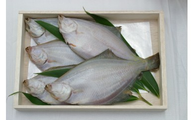 [№5921-0074]【魚屋hide】鳥の海の干しがれい詰合せ(中:9~15枚)