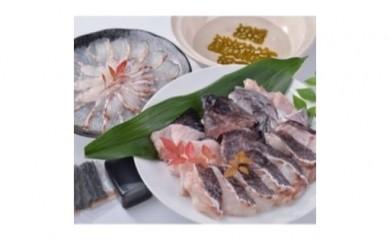 C-1.【紀北町】高級魚を身近に!手間いらずマハタ鍋・真鯛のしゃぶしゃぶセット