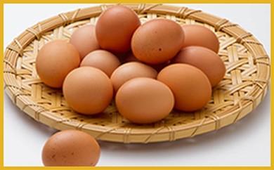 M03 地黄卵とお米と卵かけご飯用醤油のセット