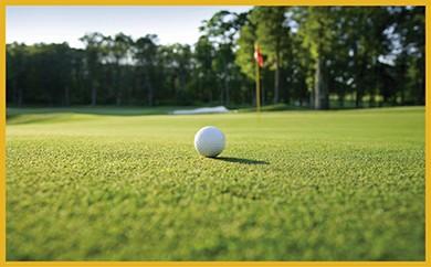 M46 ゴルフ割引券