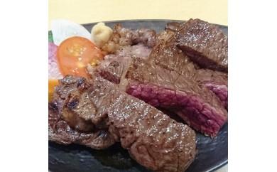 [№5742-0420]北見エゾシカ熟成肉シンタマステーキ約350g