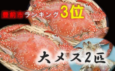 BG11 豊前海産活渡り蟹塩茹で(大メス2匹)【32500pt】