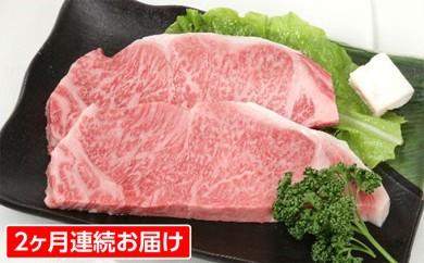 [№5905-0091]2ヶ月定期便 A5等級 飛騨牛サーロインステーキ用 約500g(250g×2枚)