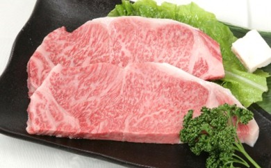 [№5905-0093]A5等級 飛騨牛サーロインステーキ用 約500g(250g×2枚)