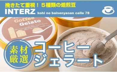 B0054 自家焙煎珈琲店INTERZ コーヒージェラート