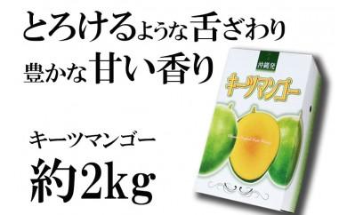 神谷ファームのキーツマンゴー【2018年発送】約2kg(2~3玉)