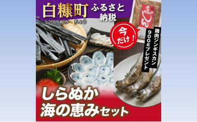 [№5723-0171]今なら「鶏肉ジンギスカン900g」プレゼント しらぬか海の恵みセット
