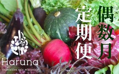 L-3 野菜★偶数月定期便 香南市のお野菜詰め合わせコース