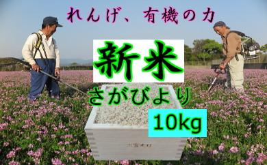 A5-045 ★れんげの力★さがびより 精米10kg【8年連続・食味「特A」】