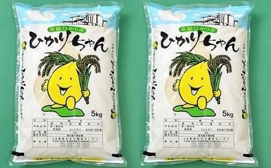 13-7 10㎏ 下妻産コシヒカリ「ひかりちゃん」