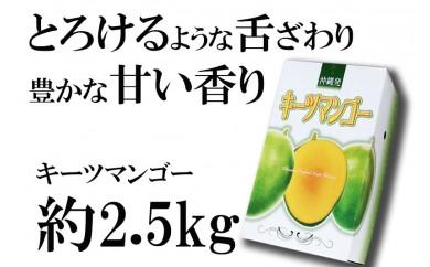 神谷ファームのキーツマンゴー【2018年発送】約2.5kg(2~4玉)