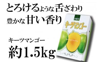 【2019年発送】神谷ファームのキーツマンゴー 約1.5kg(2~3玉)