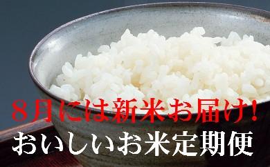 P-3 お米★定期便 おいしい土佐の米よさこい舞(偶数月10kg)