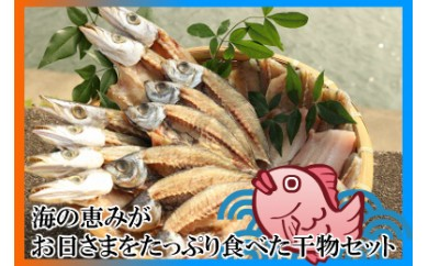 【A-178】海の恵みがお日さまをたっぷり食べた干物セット