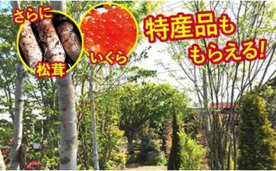 [№5674-0215]四季を感じるお庭を創る 深谷で選ぶ樹木セット