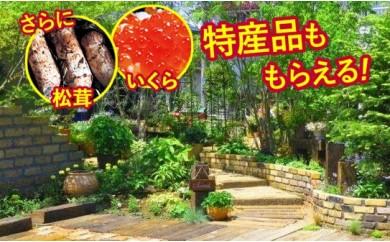 [№5674-0216]厳選された樹木で創るプロデュースガーデン ~造園のプロの手で、理想のお庭に大変身~