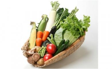 A03 おいしい野菜大集合!季節の野菜BOX(7品~8品)