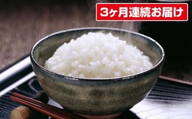 [№5724-0184]☆産直☆関さんが丹精込めて作ったお米5kg×3ヶ月連続お届け