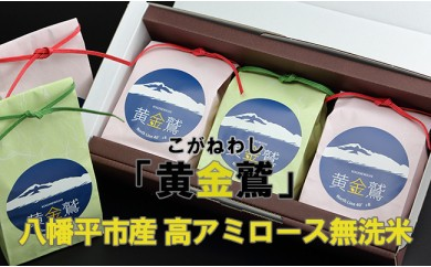 HMG237 【低GI食品】八幡平市産 高アミロース無洗米「黄金鷲」